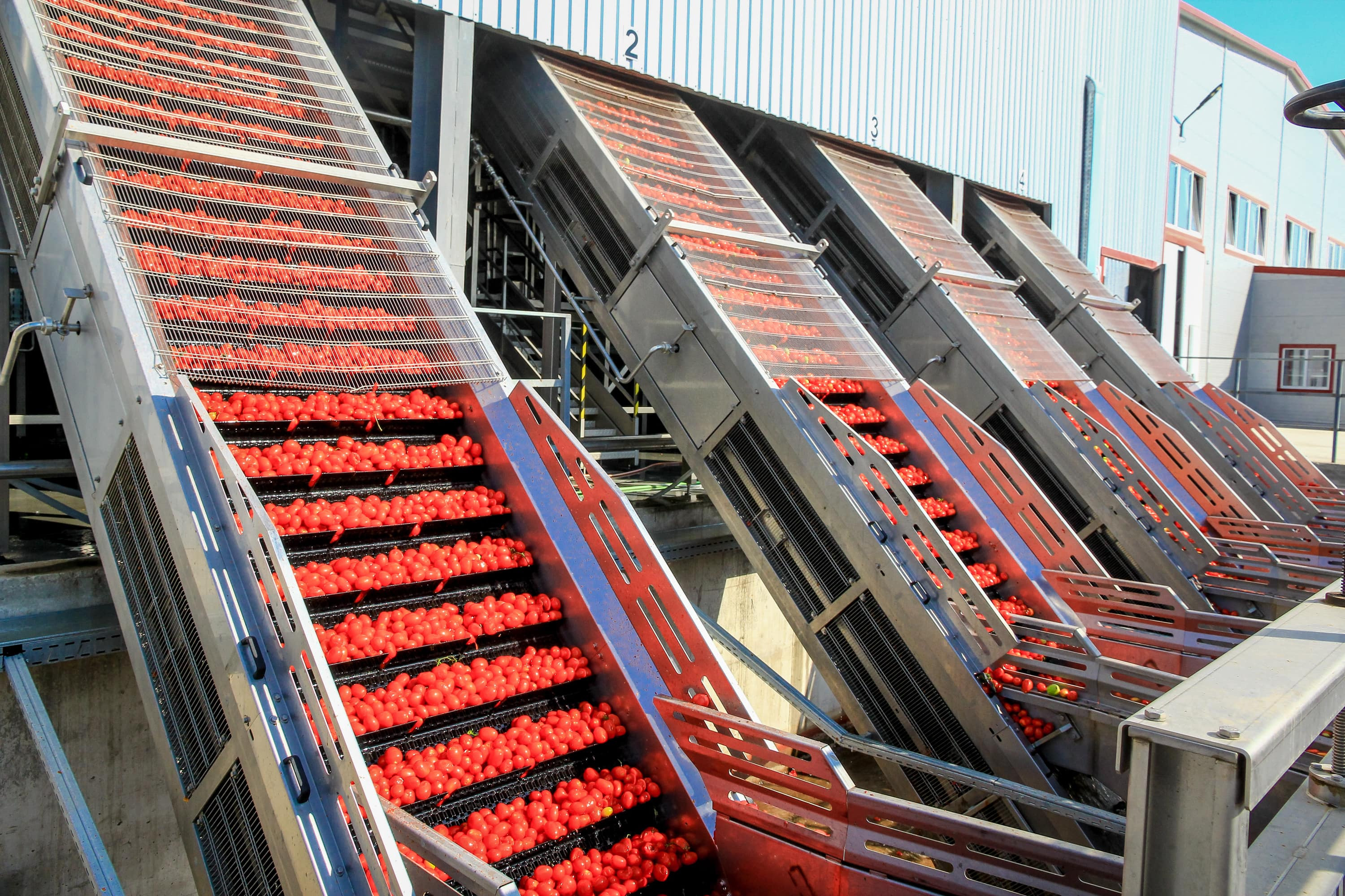 2016 INAGRO TOMATO PASTE PRODUCTION BEGAN