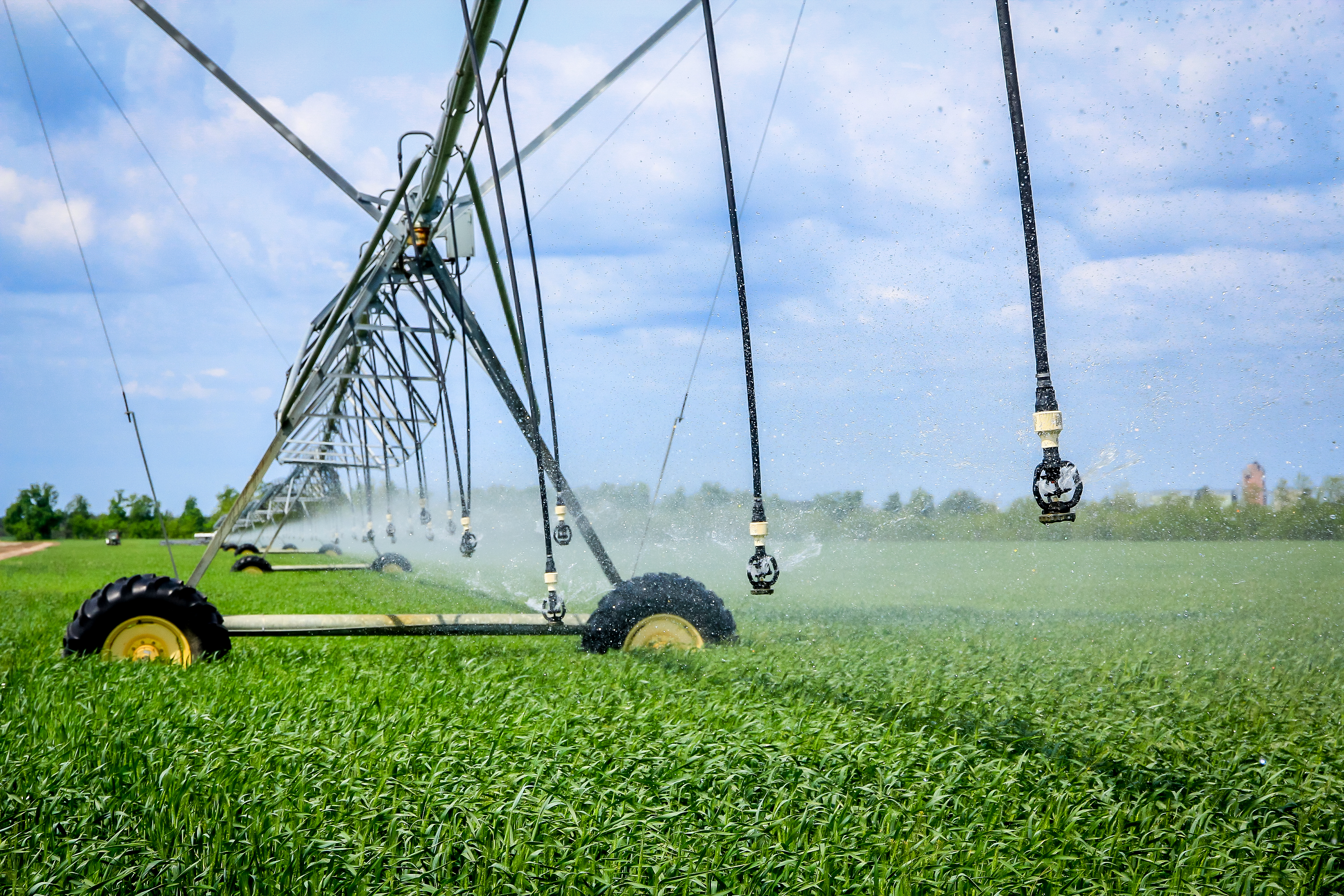 AGROFUSION EXPANDS IRRIGATION AREAS