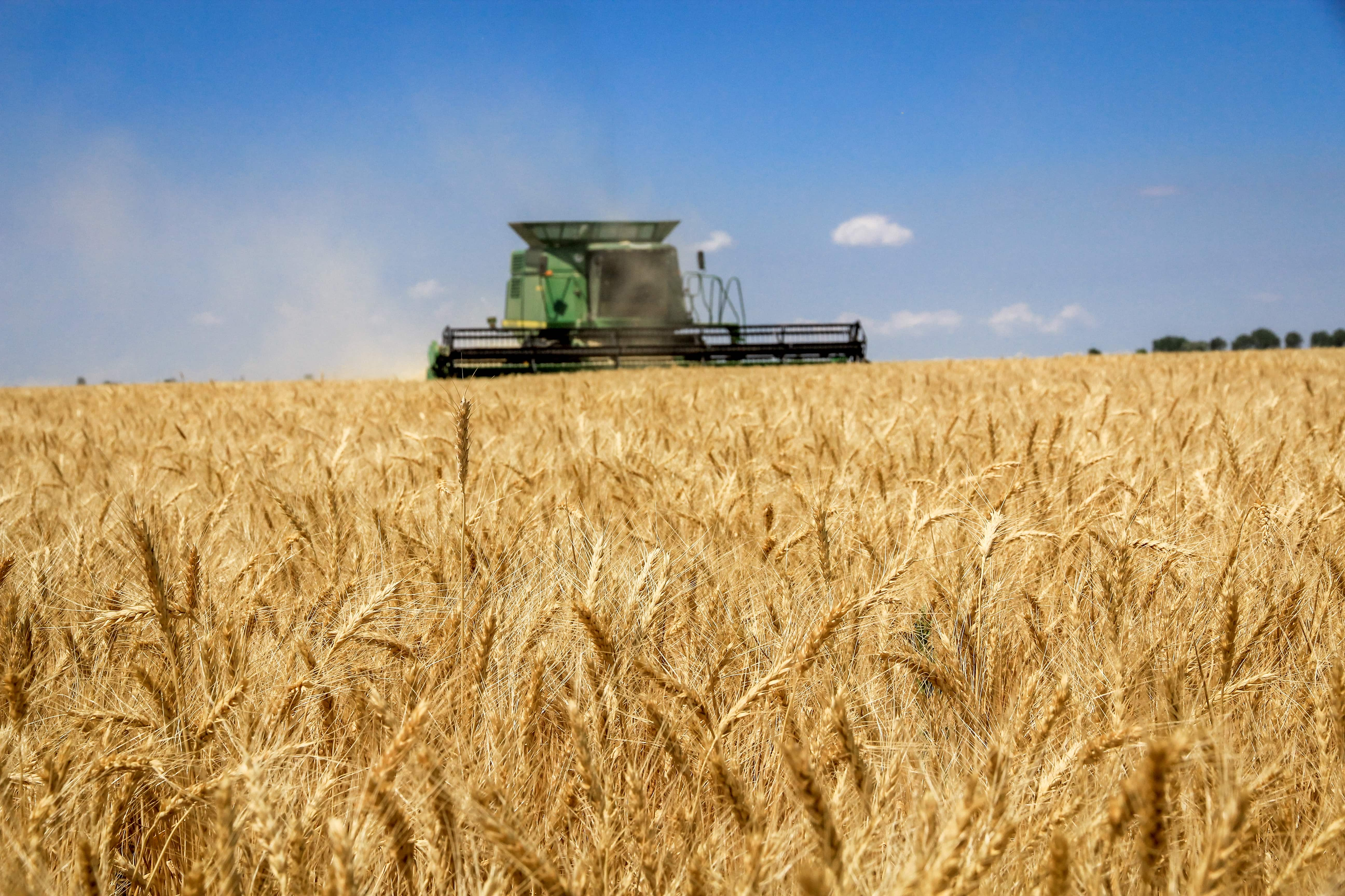 AGROFUSION FINISHED EARLY GRAINS HARVEST